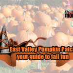 East Valley Pumpkin Patches-your guide to fall fun
