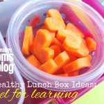5 Healthy Lunch Box Ideas: Fuel for Learning