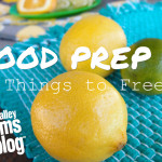 Food Prep: Things to Freeze