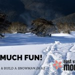 SNOW much fun in AZ!  Where to sled and build a snowman!