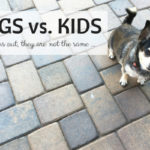 Dogs vs. Kids: It turns out, they are not the same