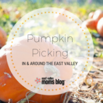 Pumpkin Picking in and around the East Valley