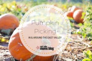 pumpkin-picking-east-val