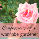 Confessions of a wannabe gardener