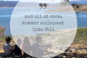 and all at once,summer collapsed into fall