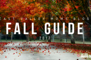 2017 East Valley Moms Blog Fall Guide