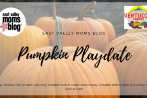 Pumpkin Playdates at Vertuccio Farms | East Valley Moms Blog