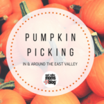 2017 Pumpkin Picking in and around the East Valley
