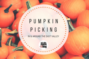pumpkin picking east val (1)