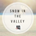 Have a Fun Snow Day Right Here in the East Valley