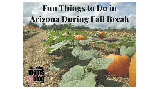 Fun things to do in Arizona During Fall Break | East Valley  Moms Blog