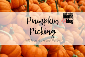Pumpkin Picking In & Around the East Valley | East Valley Moms Blog