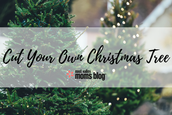 Cut Down Your own Christmas Tree | 2018 Holiday Guide | East Valley Moms Blog