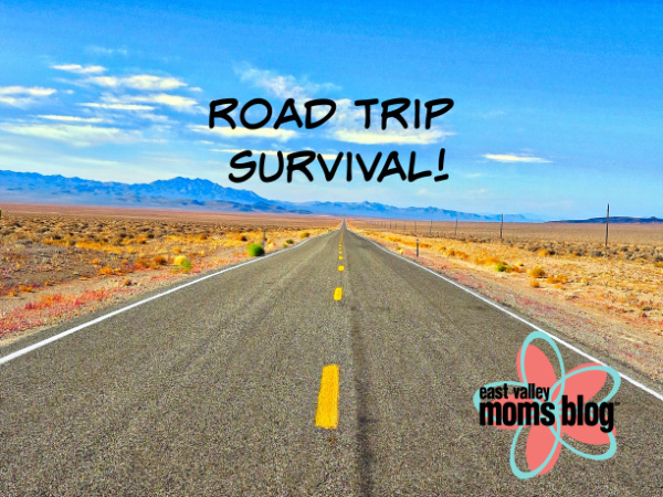 Tips for surviving your summer road trip! | East Valley Moms Blog
