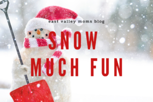 2019 Snow Much Fun Playing in Snow around the valley