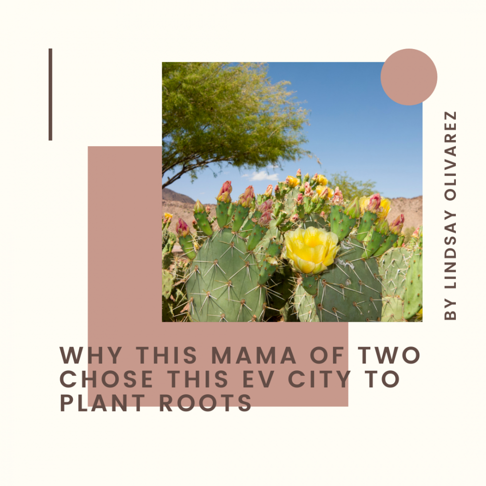 EV Transplant Guide article visuals